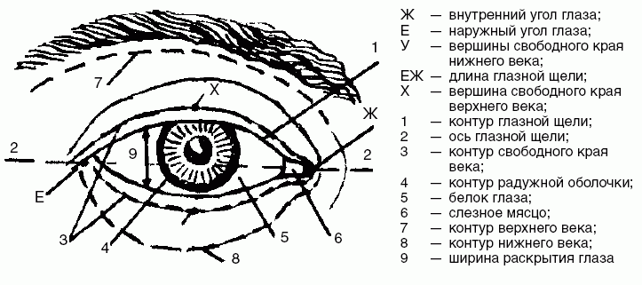 Красный уголок глаза: возможные причины и методы лечения - sammedic.ru