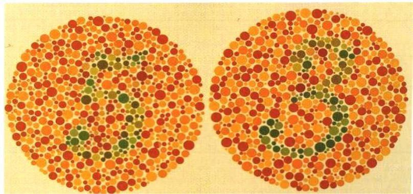 Цветовое зрение — большая медицинская энциклопедия