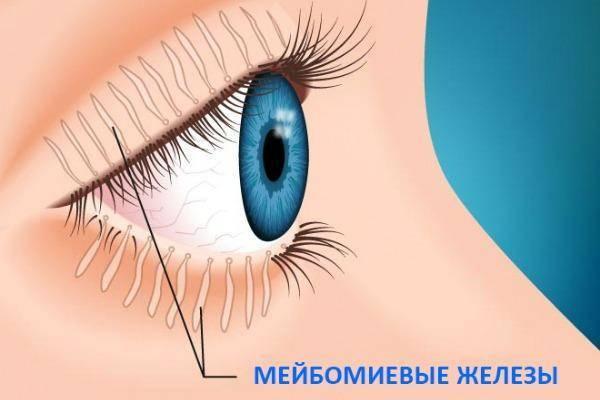 Блефарит. диагностика и лечение