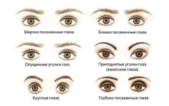 Абсолютная скотома глаза – что это такое: глазная скотометрия