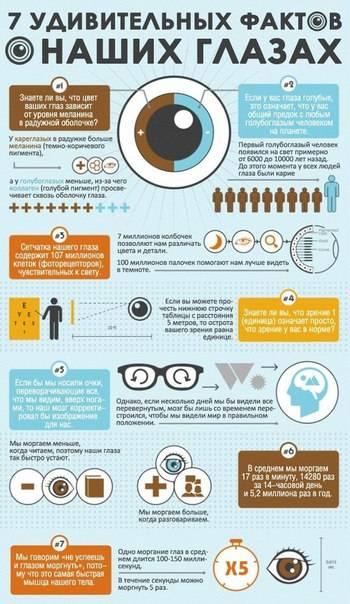 40 интересных фактов о глазах, которые вы, вероятно, не знаете • всезнаешь.ру