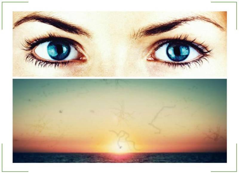 Черная точка в глазу передвигается вместе с взглядом: что это, опасность и как лечить