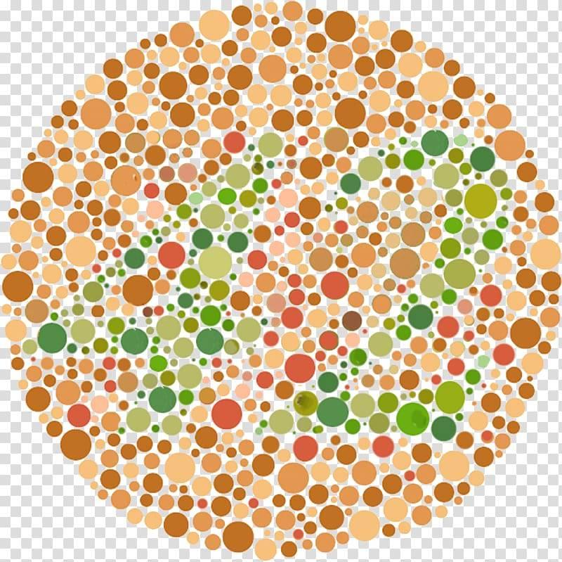 Тест на дальтонизм: 27 таблиц рабкина для проверки цветоощущения и выявления патологии. онлайн тест по таблицам рабкина для проверки цветоощущения