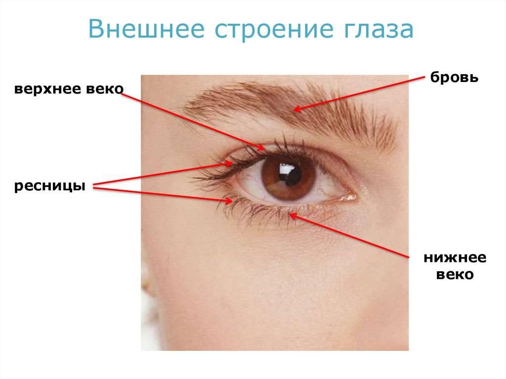Болит кожа во внешнем углу глаза
