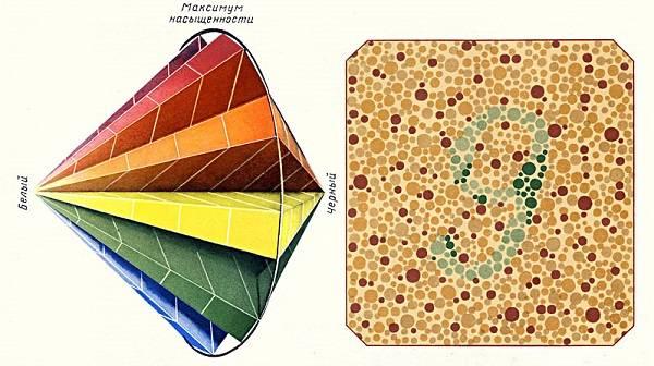Цветовосприятие: проверка зрения и тесты при цветовой слепоте