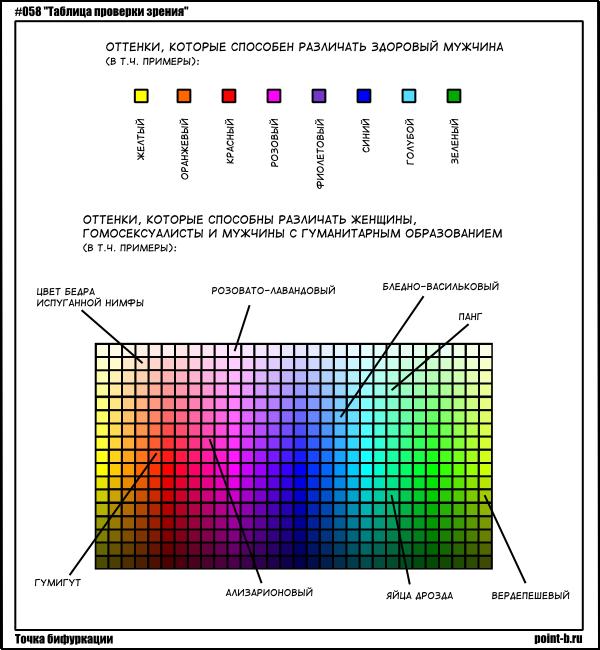 Цветовое зрение – сколько цветов различает человек и почему