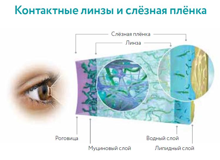 Синдром сухого глаза: симптомы и лечение, лучшие капли и препараты 2020 года