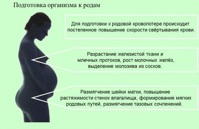 Влияние плохого зрения на беременность и роды коррекция до или после