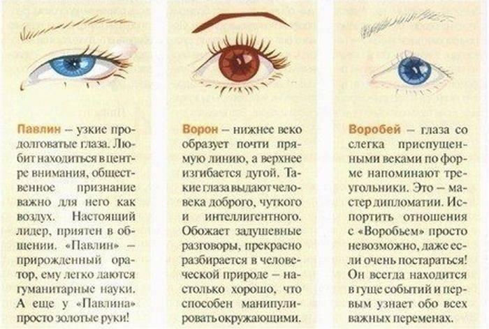Классификация нарушения зрения таблица