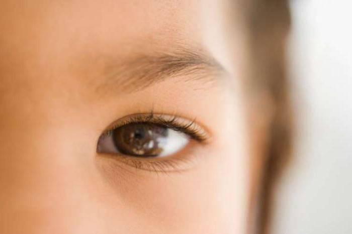 Что делать если дергается нижнее веко левого или правого глаза: причины и симптомы