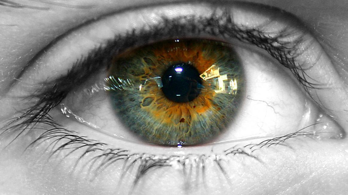 Болотный цвет глаз: макияж, фото и видео