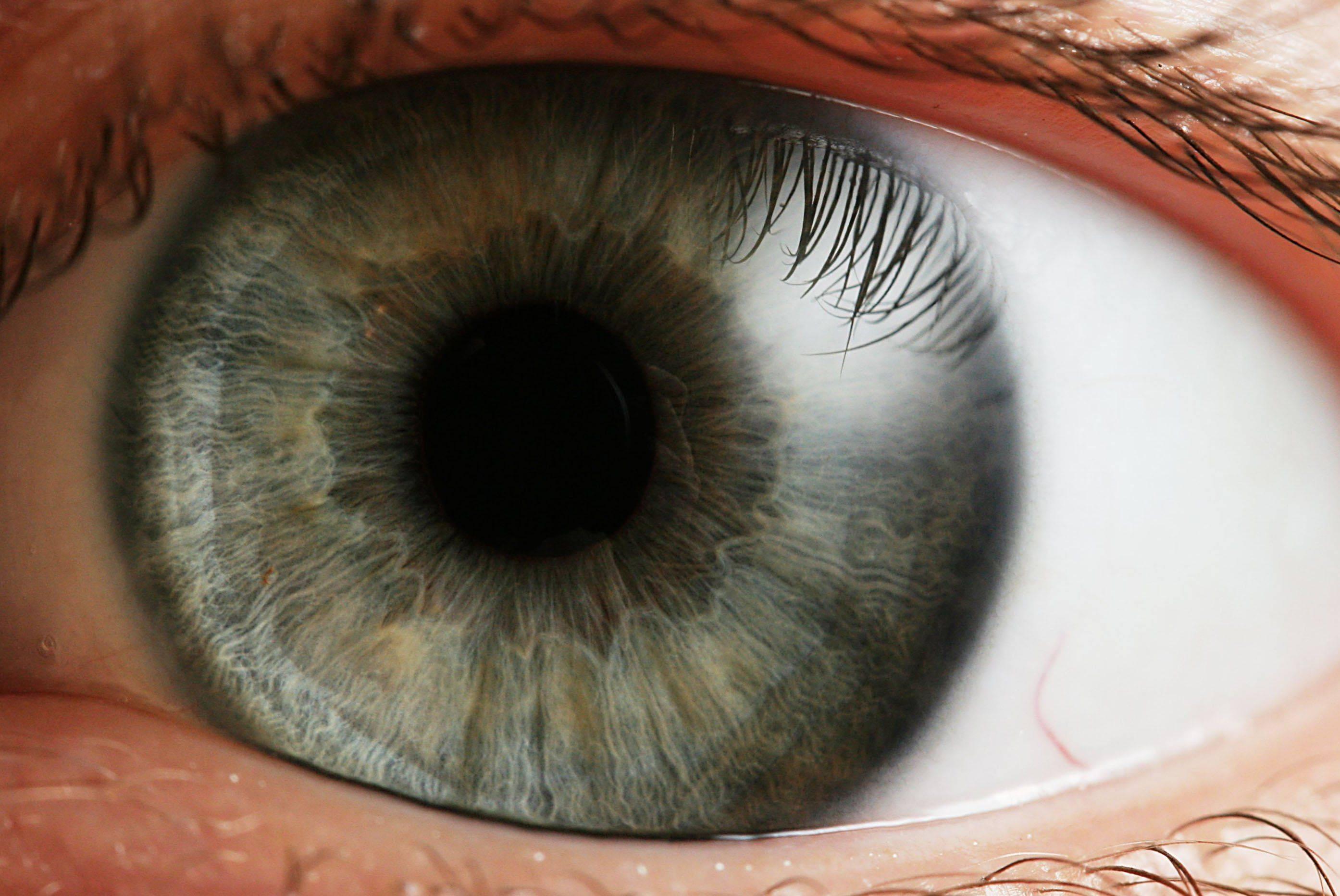 Коррекция зрения: ФРК или Ласик